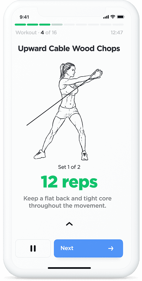 Illustrated gym workout plans and routines