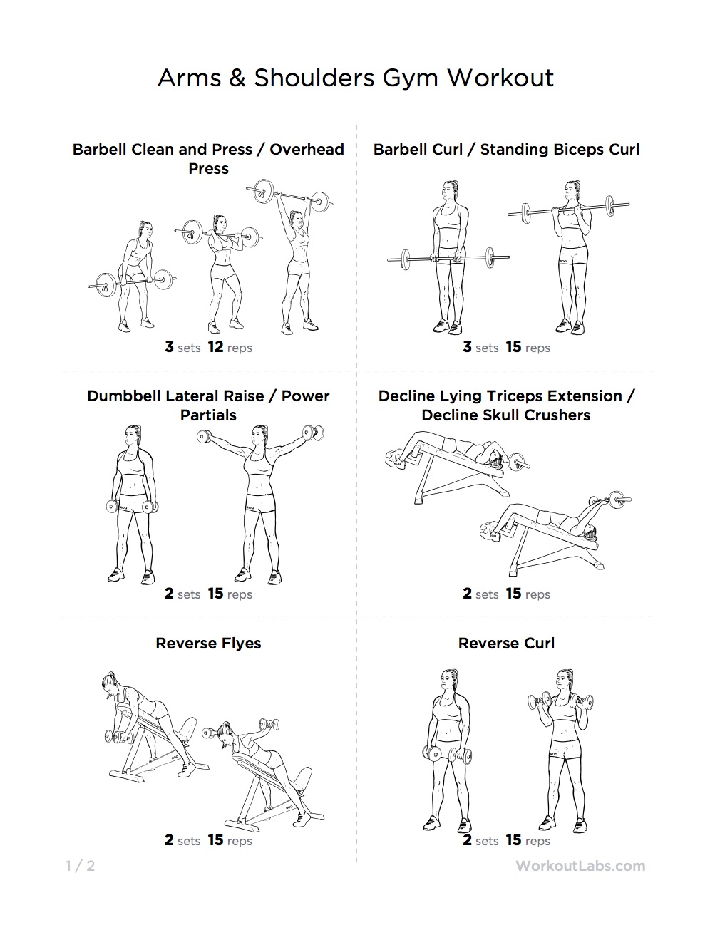 Toned Strong Arms Shoulders Gym Workout For Men Women