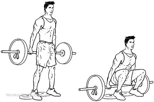 Barbell Hack Squat | Illustrated Exercise guide ...