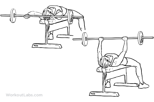 how to do dumbbell pullover