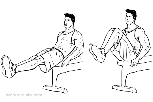 Seated Bench Leg Pull Ins Flat Bench Knee Ups