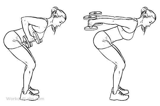 Bent Over Double Arm Tricep Kickbacks – WorkoutLabs Exercise Guide