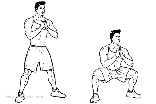 Body Weight Sumo / Wide Stance Squats | WorkoutLabs 💪