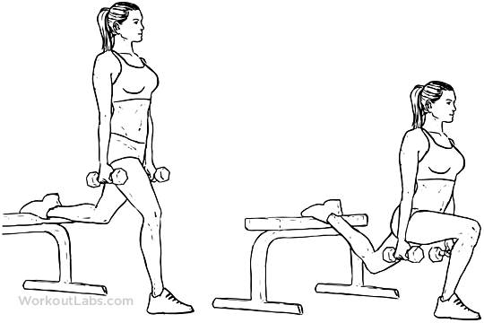 Image result for workoutlab bulgarian split squat