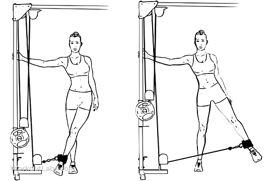 Cable Hip Abduction Adduction Workoutlabs