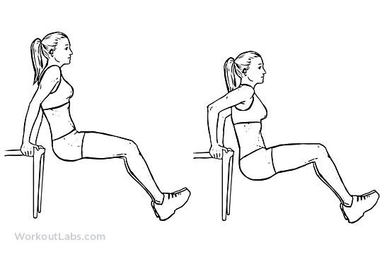 Chair Tricep Dips