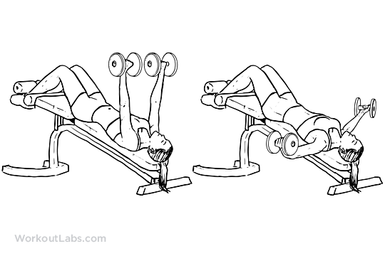 Decline Dumbbell Fly Illustrated Exercise Guide Workoutlabs