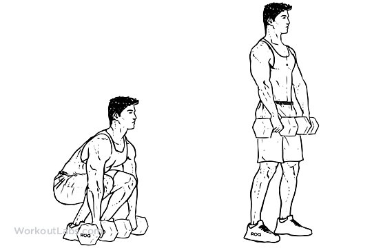 Dumbbell Deadlift Illustrated Exercise Guide Workoutlabs