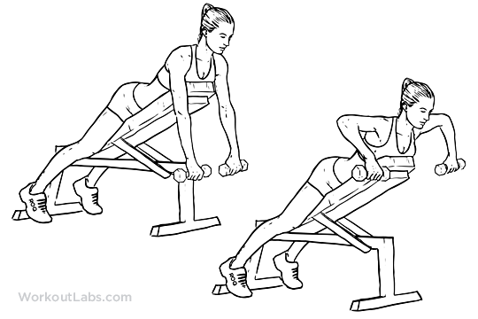 Dumbbell Incline Bench Row