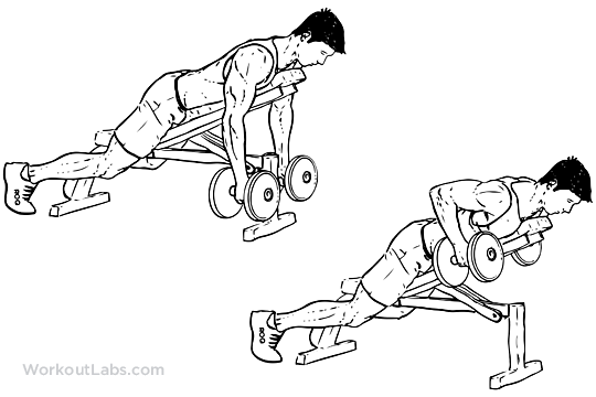 how to choose an exercise bench