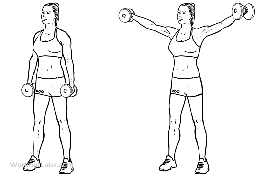 Dumbbell Lateral Raise / Power Partials