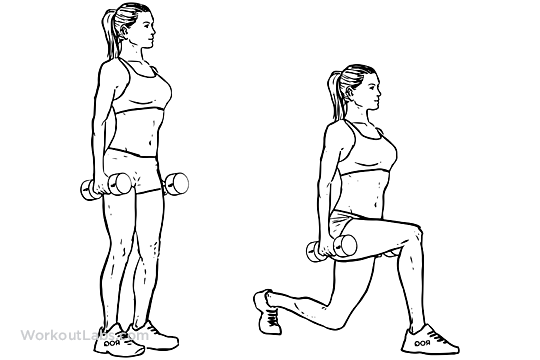 Dumbbell Lunges Workoutlabs Exercise Guide