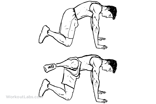 fire hydrants    abductor    adductor knee raises