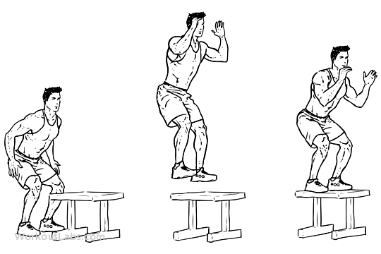 High Box Jump Illustrated Exercise Guide Workoutlabs