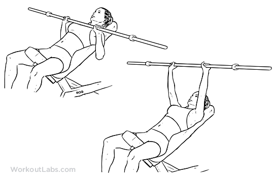 Incline Barbell Bench Press | Illustrated Exercise guide