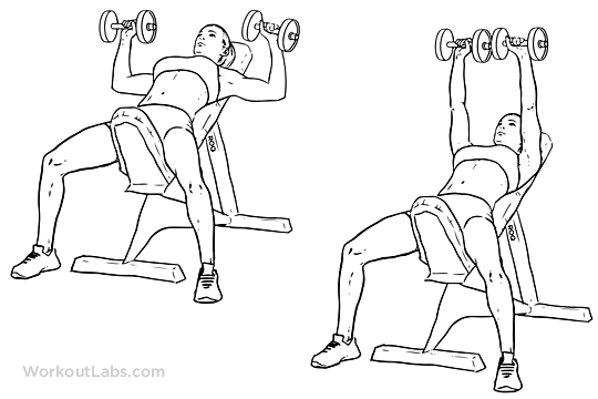 incline dumbbell bench press illustrated exercise guide