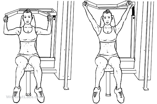 Machine seated shoulder press workoutlabs exercise guide publicscrutiny Gallery