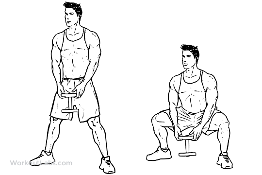 Front Dumbbell Squats Diagram Trusted Wiring Diagram