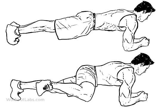 Plank Knee To Elbow Workoutlabs Exercise Guide