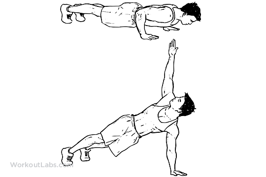 Spin Push Up Rotations Workoutlabs Exercise Guide