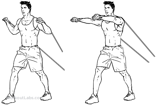 Resistance Band Chest Press Workoutlabs Exercise Guide