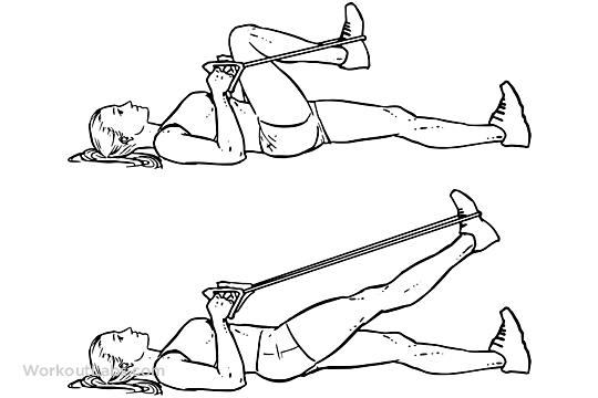 Resistance Band Lying Leg Extensions Workoutlabs Exercise Guide