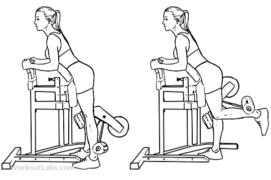 Standing Leg Hamstring Curl Illustrated Exercise Guide