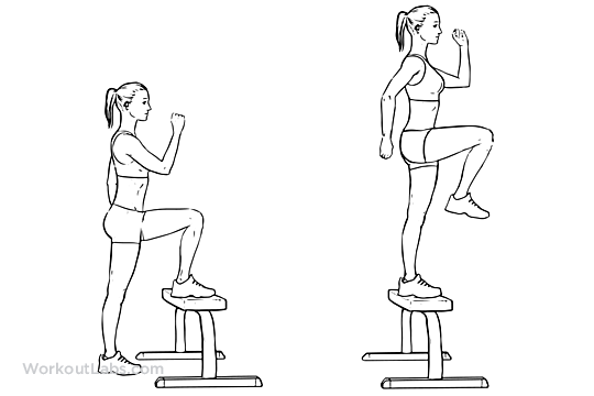 Step Up With Knee Raise Illustrated Exercise Guide