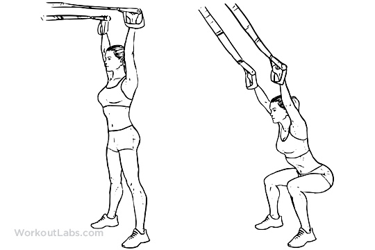 photo relating to Trx Workout Plan Printable known as TRX Suspension Straps Overhead Squat Illustrated Fitness