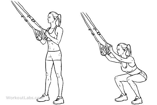 TRX Suspension Straps Squat