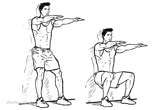what muscles do wall sits work diagram