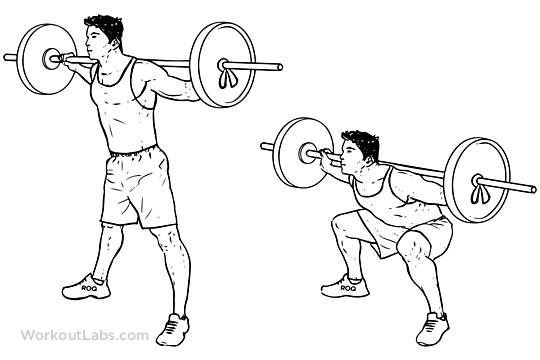Wide Stance Sumo Barbell Squat Illustrated Exercise